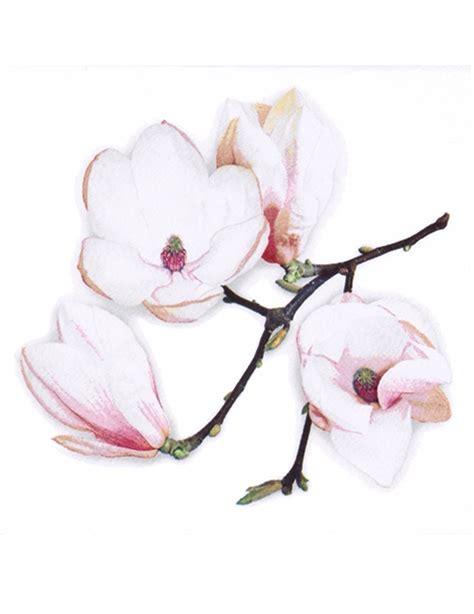 fiori con tovaglioli carta 20 tovaglioli di carta a fiori bianchi su vegaooparty