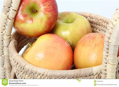 Apple Gift Card New Zealand - new zealand fuji apples stock images image 10762434