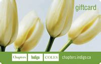 Chapters Indigo Gift Card - chapters gift card