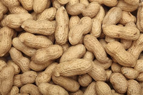 first peanut genomes sequenced