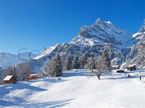 Chalet Home Plans by Typical Swiss Winter Season Landscape January 2011