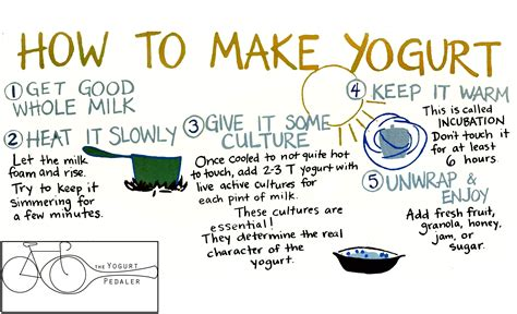 how to yogurt how the yogurt pedaler