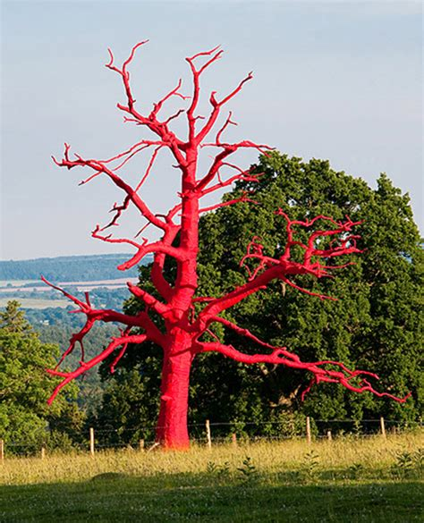 james croak on trees in contemporary art