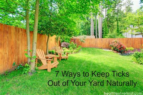 Ticks In Backyard by 7 Ways To Keep Ticks Out Of Your Yard Naturally Health