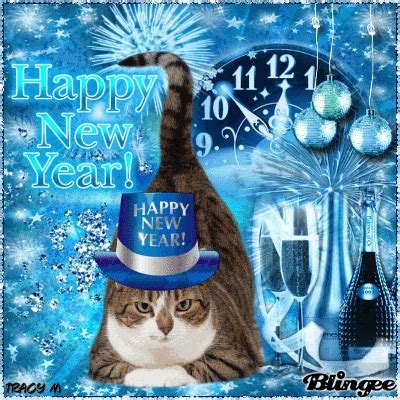 the year of the cat new year new years cat picture 127382447 blingee
