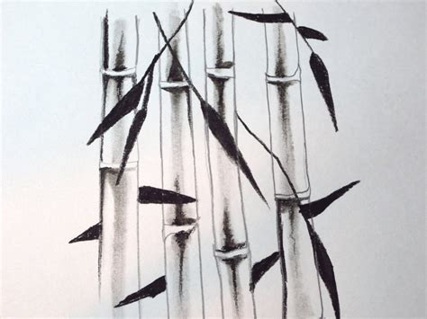 Drawing Of A Bamboo Tree by How To Draw Bamboo