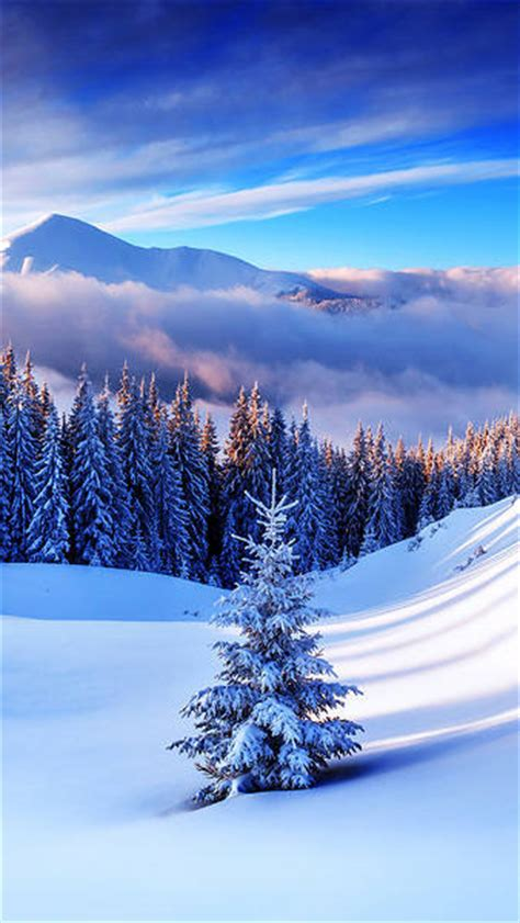 christmassnow pictures for iphones winter mountain tree iphone 6s plus wallpaper gallery yopriceville high quality images and