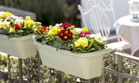 come decorare un balcone con fiori come decorare il balcone in primavera con i fiori leitv