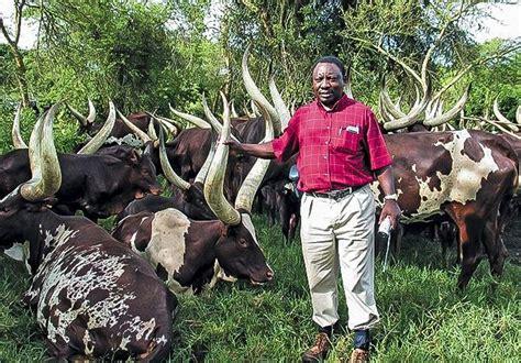 ramaphosa sets  stage   buffalo market city press
