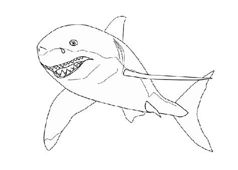 realistic sharks coloring pages
