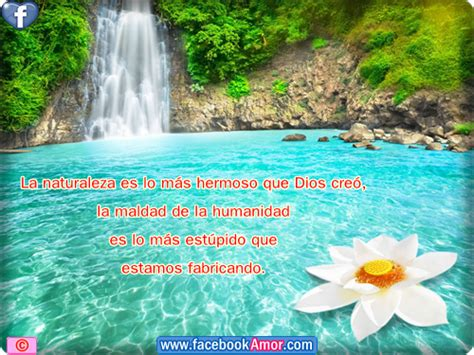 imagenes lindas de la naturaleza imagenes con frases a la naturaleza etiquetar en facebook