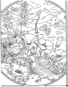 Detailed Landscape Coloring Pages For Quail Coloring Pages For The Birds