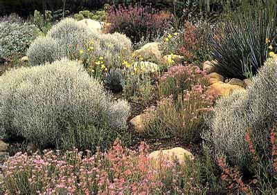 southern california garden ideas howstuffworks