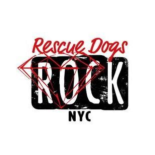 rescue nyc rescue dogs rock nyc rdr nyc
