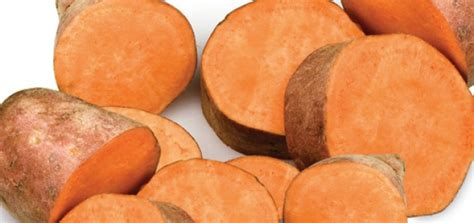 can dogs eat baked potatoes studies prove sweet potatoes heal stomach ulcers up