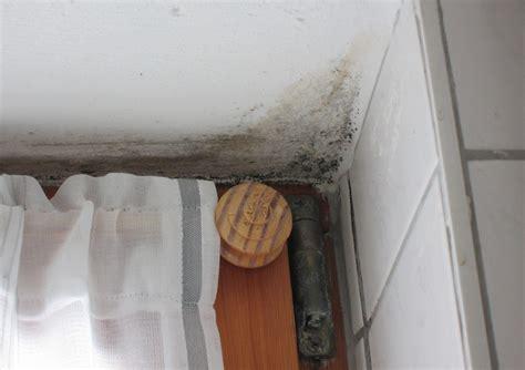 Wie Gef Hrlich Ist Schimmel In Der Wohnung 4501 by Schimmel In Der Wohnung Entfernen Und Vermeiden Schimmel