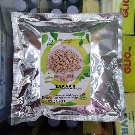 Benih Kacang Merah benih kacang tanah takar 2 75 biji dramaga bibitbunga