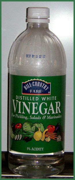 ringworm treatment the counter vinegar worms search results dunia pictures