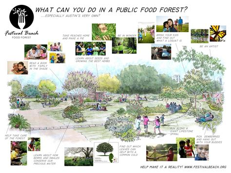 Lake House House Plans food forest plans festival beach food forest