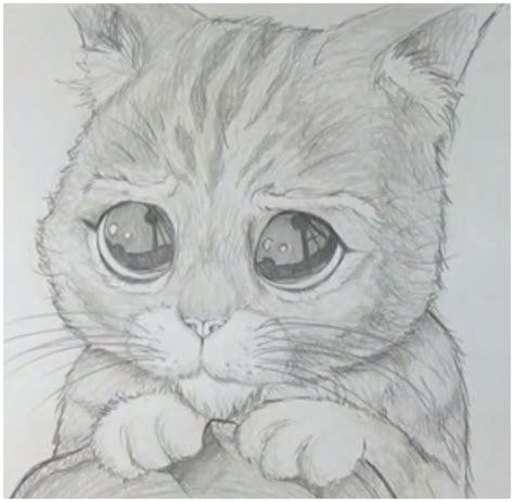 dibujos realistas muy faciles imagenes para dibujar gatos a lapiz dibujos de gatos