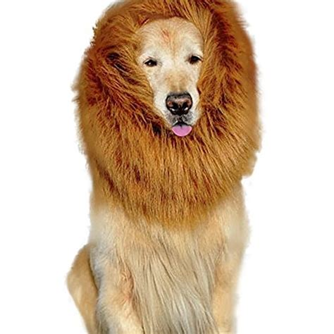 golden retriever mane costume mane costume mane for and big mane wigs scarf fancy dress