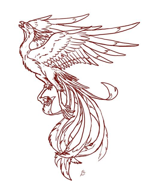pheonix tattoo design designs tattoos wings