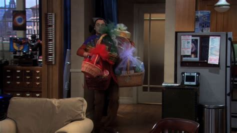the bath item gift hypothesis the big bang theory wiki