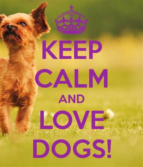 when do puppies calm keep calm quotes for dogs quotesgram