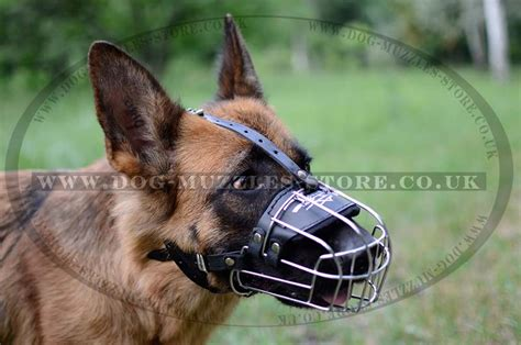 wire muzzle for shih tzu rottweiler wire basket muzzles breeds picture