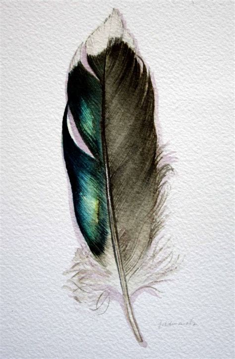 feather tattoo grandad original watercolor feather study 177 mallard feather