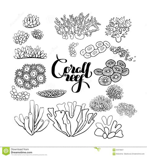 underwater plants coloring pages collection of coral reef elements