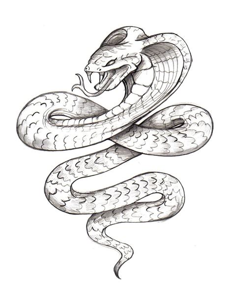 tattoo sketch designs snake tattoos designs ideas and meaning tattoos for you