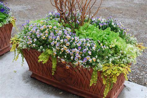 Concrete Flower Basket Planter by Cast Concrete Basket Weave Planter Detroit