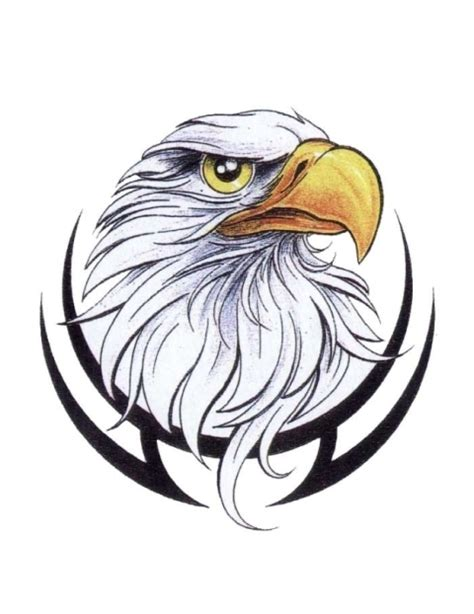tribal eagle head tattoo american eagle in black tribal frame design