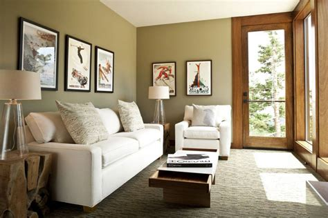 amazing small living room decorating ideas  cozy