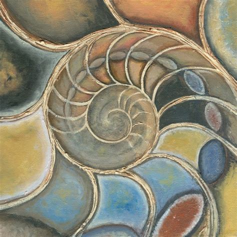nautilus cross section nautilus cross section by jo sheppard artwanted com