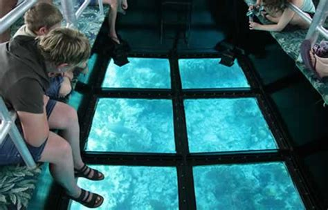 glass bottom boat tours in key west key west glass bottom boat discount save 10 today