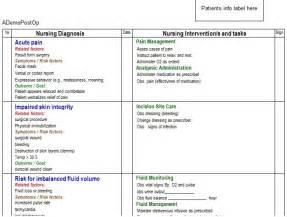electronic lesson plan template nursing lesson plan template bestsellerbookdb
