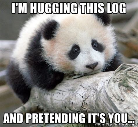 Sad Panda Meme Generator - i m hugging this log and pretending it s you sad