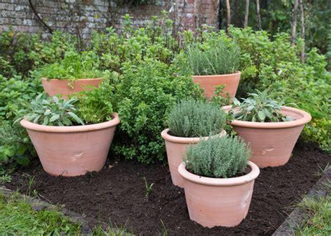 How To Make Kitchen Garden In Pots by Buy Terracotta Kitchen Garden Grow Pot