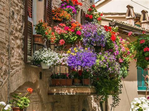 balcone fiorito fiori da balcone estivi donna moderna