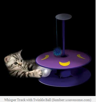 Mainan Tikus Bunyi Cit 7 mainan kucing yang paling direkomendasikan kucing gue