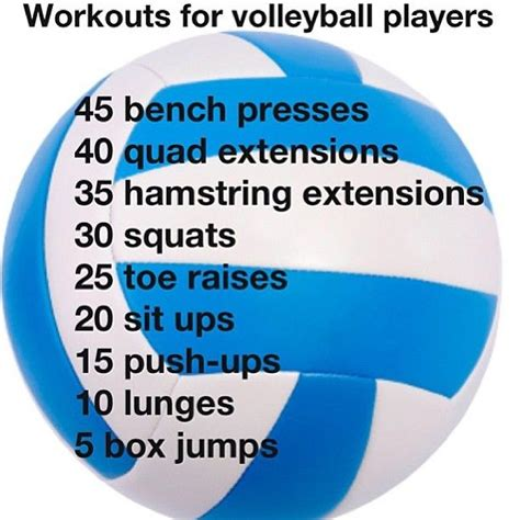 libero volleyball height 25 best ideas about volleyball workouts on pinterest ab