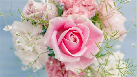 themes beautiful rose صور وخلفيات ورد أحمر 2018 رومانسى red roses romantic