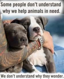 animal rescue quotes  pinterest animal rescue