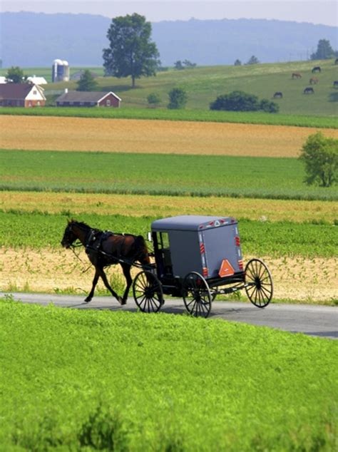 dutch country 17 best images about amish country lancaster pennsylvania
