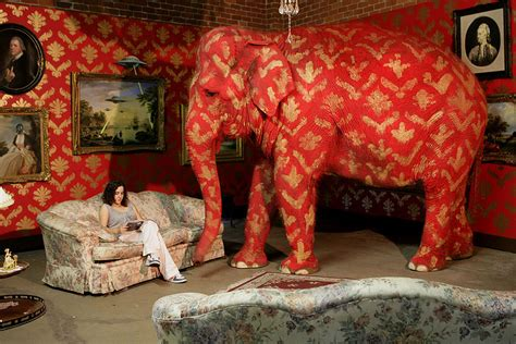 elephant in the room the elephant is the elephant in the room traina design traina design