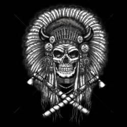 t shirt custom design native american indian chief skull