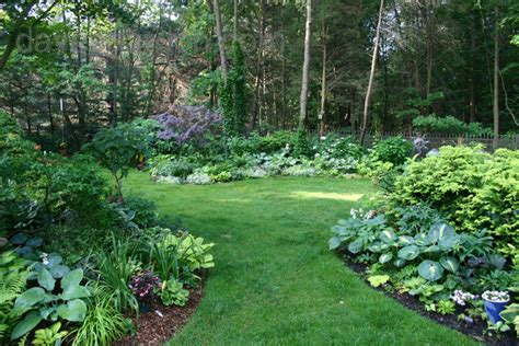 garden plans zone 7 tropicals tender perennials evergreen exotics for zone