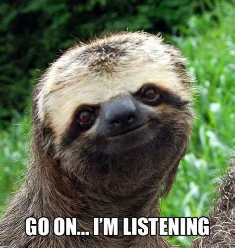Cute Sloth Meme - the best of sloth memes 16 pics